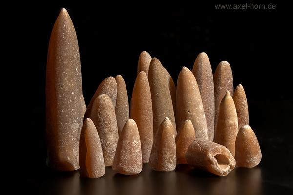 Donnerkeil Fossil